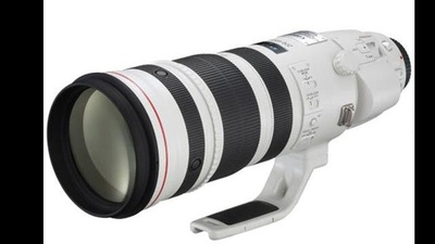 Canon EF 200-400 mm/4,0 L IS USM + Extender 1.4x