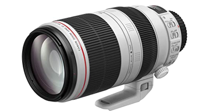 Canon 100-400 4.5-5.6 L IS USM Mark II