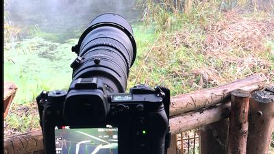Nikon Nikkor AF-S 500mm 4.0 D