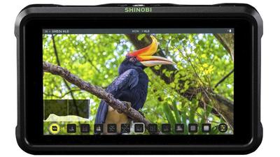 Monitor Atomos Shinobi (HDMI) inkl. 2 Akkus, Ladegerät